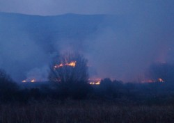 gorse-fires-Ireland-scotland-wales