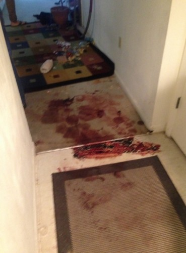 The pooled blood, viewed from the perspective of the front door, through the foyer, looking into the apartment.